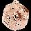 Thumbnail: Dodo Pendant