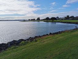 Kiwi Esplanade Walk