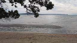 Mission Bay Beach: Walks