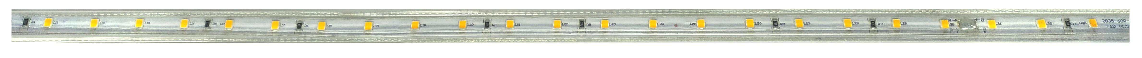 ML-0041, ML-0042.png