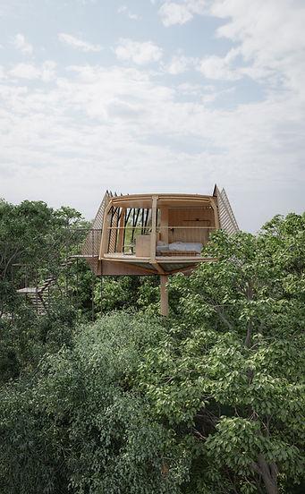 Tree House AerialView