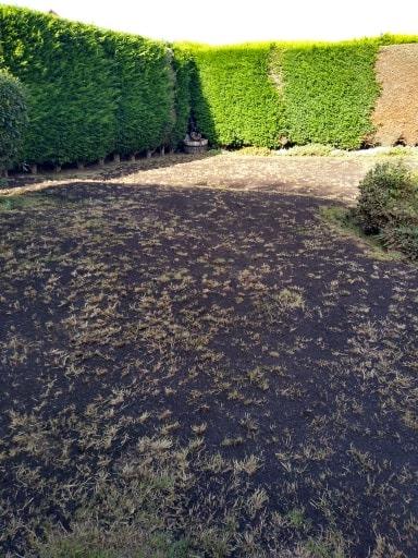 Lichfield Lawn Renovation