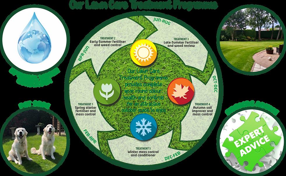 Treatment Programme Full.png