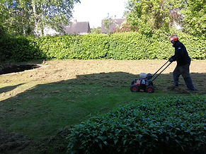 Kingsbury Lawn Care | lawn treatment service / this image is of Kingsbury Lawn Care owner Jack Chapman scarifying a lawn. There is a great deal of debris that was choking the lawn