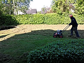 Kingsbury Lawn Care / lawn treatment service / this image is of Kingsbury Lawn Care owner Jack Chapman scarifying a lawn. There is a great deal of debris that was choking the lawn