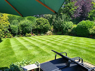 Kingsbury Lawn Care   Lawn Fertiliser   This image is of a freshly cut rear lawn in summer. It is a very attractive garden with sunloungers and an umbrella