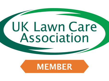 The Best Lawn Care Company for You?