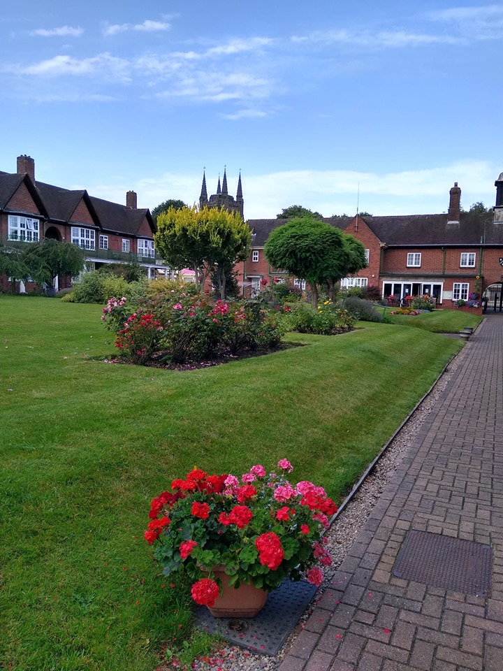 Beautiful lawns after treatment