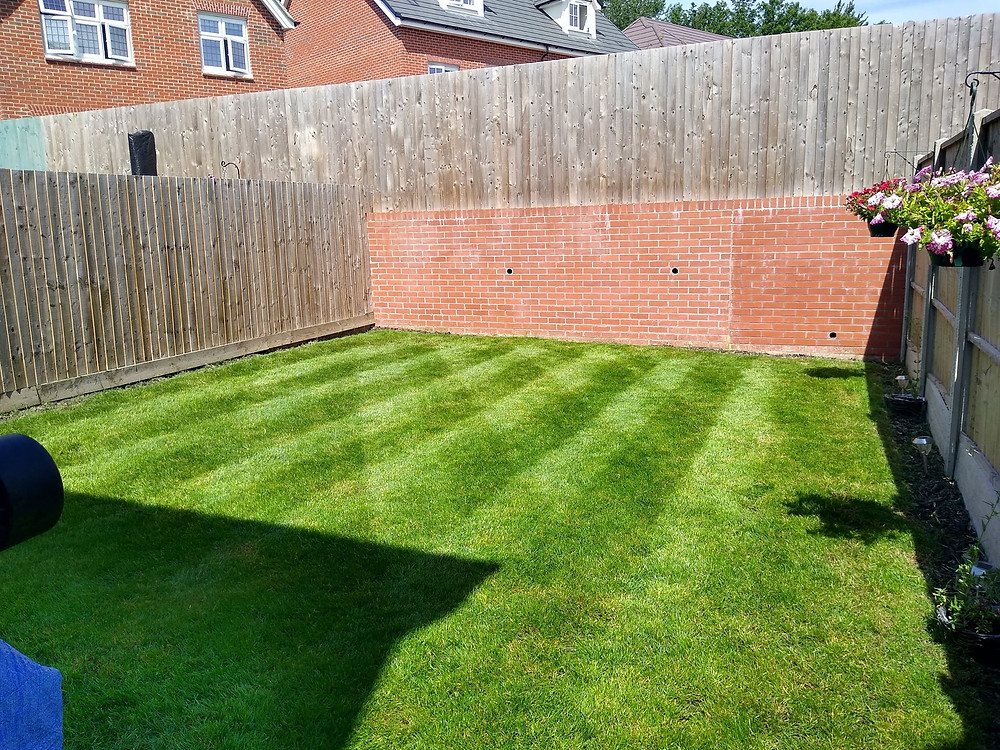 Kingsbury Lawn Care | lawn treatment service | this image is of a new build rear garden with a healthy lush green lawn