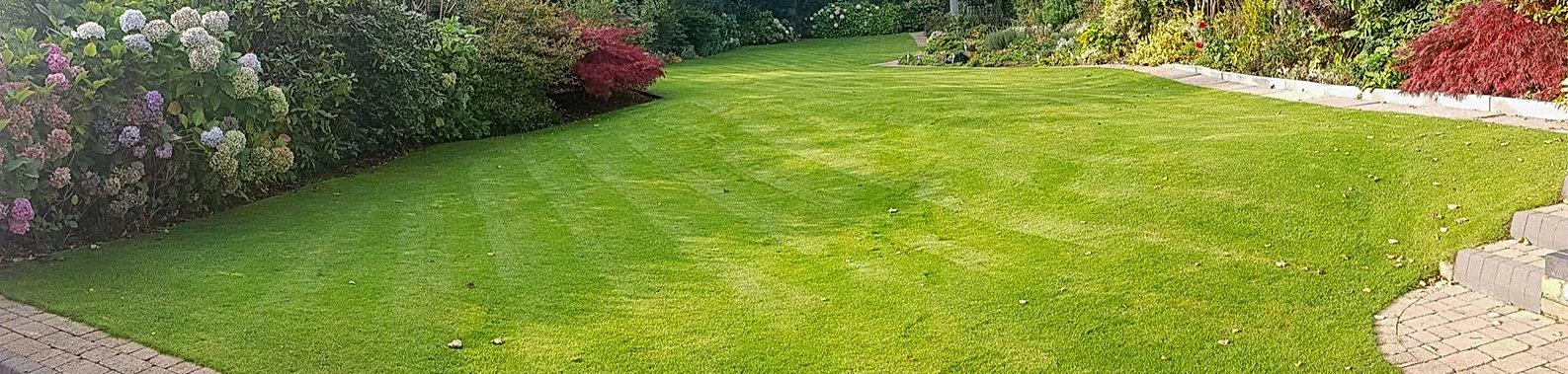 Lawn Care Services in Sutton Coldfield