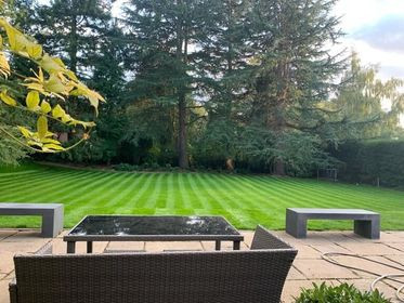 Four Oaks lawn renovation - after