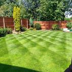 Lawn Following Treatment