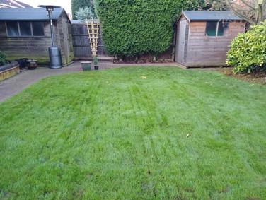 Lawn aeration quaility lawn care