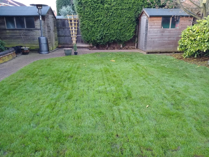 Lawn aeration quaility lawn care