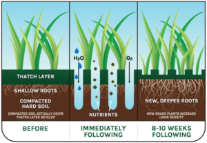Kingsbury Lawn Care / lawn treatment service / this image is of a graphic displaying some of the benefits of lawn aeration