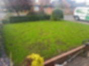 Lawn renovation specialists