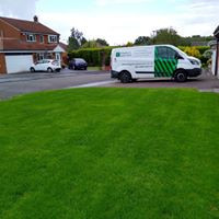 Lawn renovation drought recovery