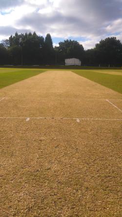 Cricket pitch renovation