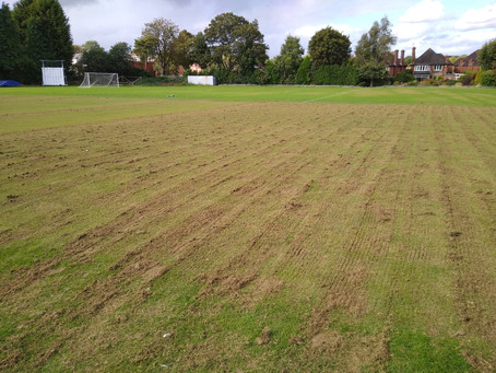 End of Season Renovation Thoughts - Cricket