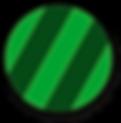 Green Circle_edited.png