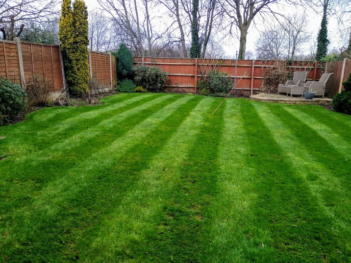 Striped treated lawn Lichfield