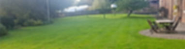 Moss and weed free green grass near Ashby De a Zouch