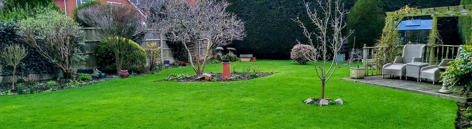 Lawn Treatment Service in Hinckley, Nuneaton and Bedworth