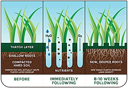 Benefits of Lawn Aeration in Lawn Care