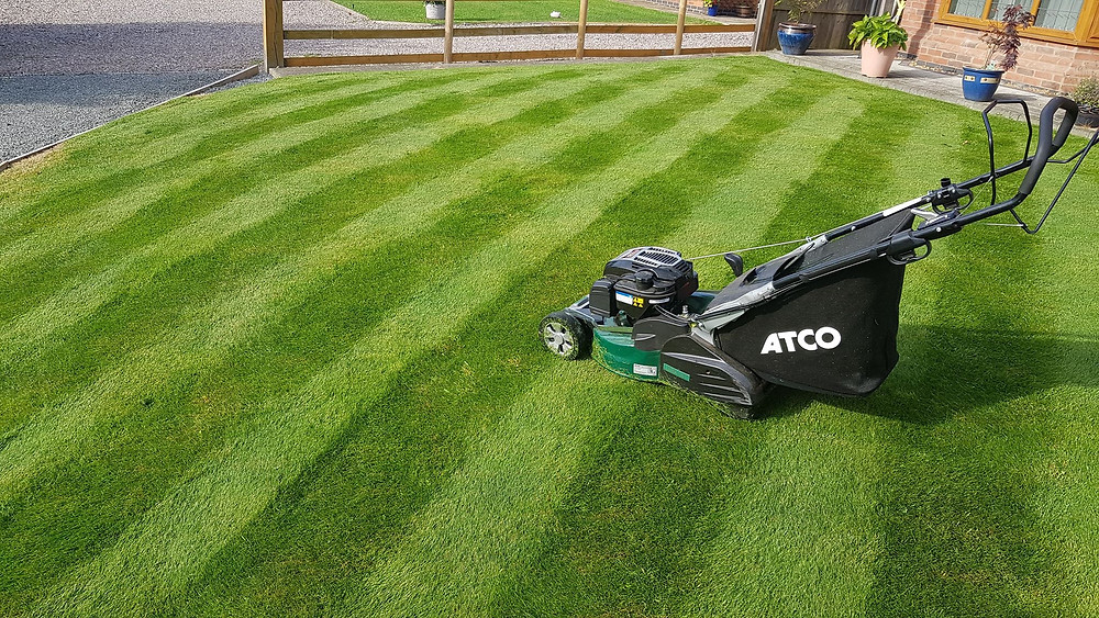 Kingsbury Lawn Care / lawn treatment service / this image is of a healthy striped lawn with a professional mower positioned centre