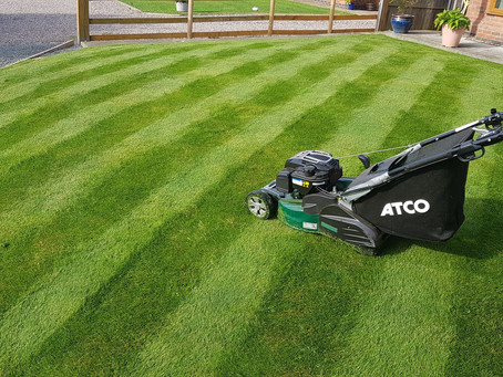 The Lawn Mowing Guide
