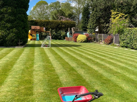 Mental Health Matters! How Your Lawn Can Help?