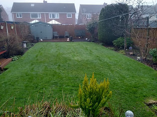 Kingsbury Lawn Care | Moss Control | This image is of a lawn following a moss treatment which is thick and deep green in colour