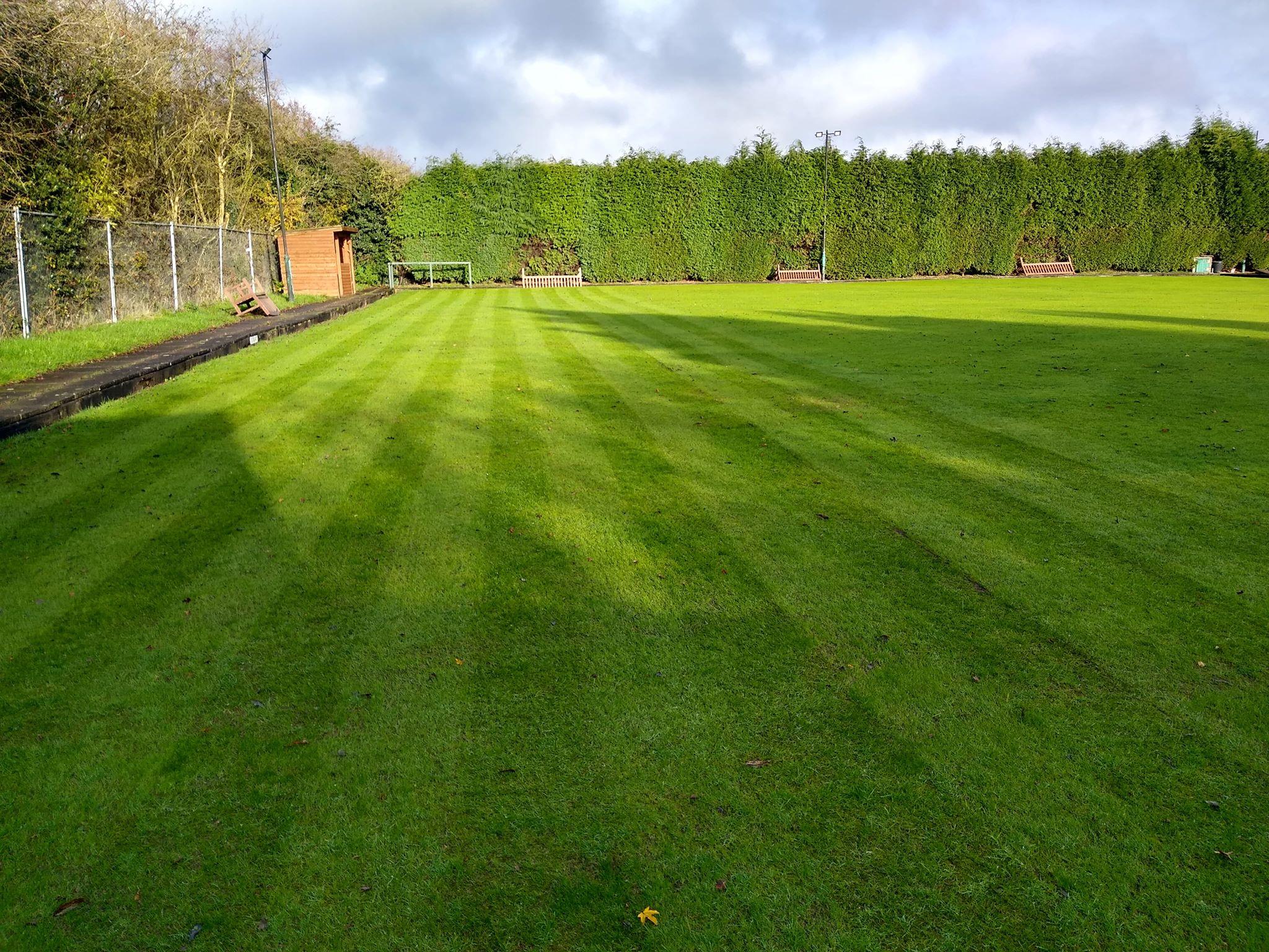 Large lawn treatment Bedworth