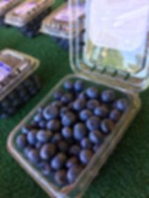 blueberry pint.jpg