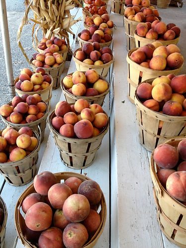 Pastore Orchards Peaches