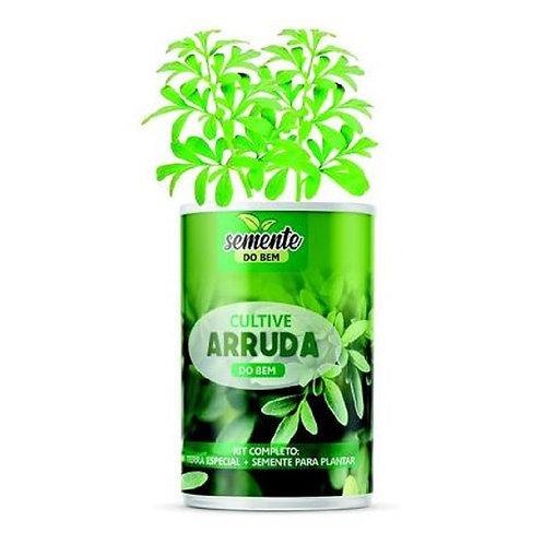 Semente do Bem - Sementes de Arruda - Horta em Casa ou Apartamento