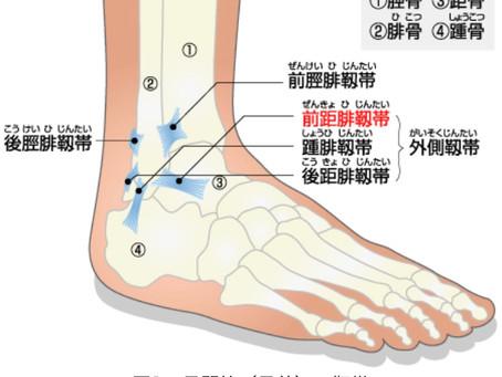 外傷シリーズ1:ちょっと足捻っただけ〜全身へ  先ずはしっかり固定を!