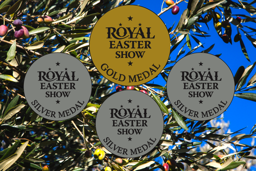 Gold and three silver medals at the royal easter show 2019