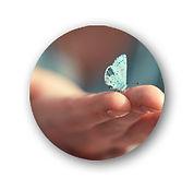 ButterflyButton.jpg