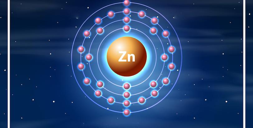 El zinc: uno de los minerales protagonistas de las funciones más importantes del organismo.