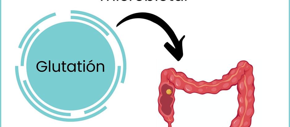 Es interesante cómo por fin se revela la relación entre la microbiota y el cerebro.