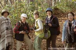 Ecotherapy Getaway Holiday