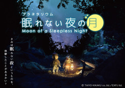 Moon of a Sleepless Night