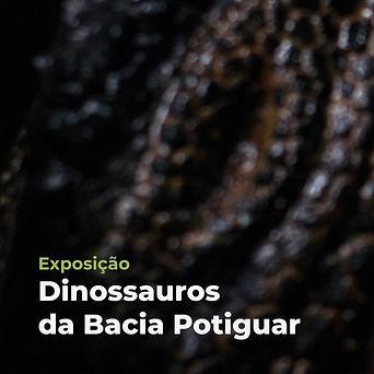 dinossauros da bacia potiguar.jpg