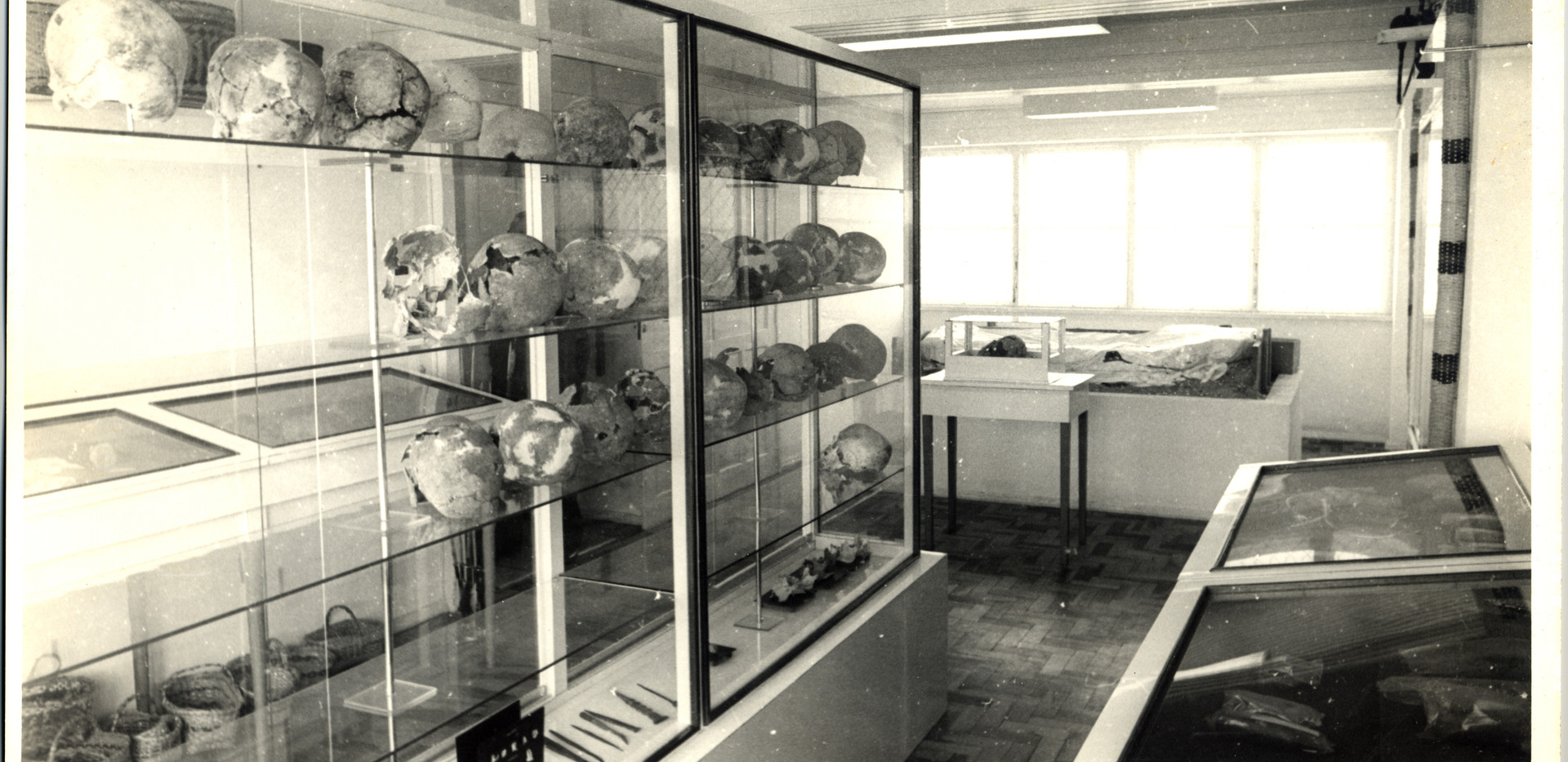 Antigo Instituto de Antropologia