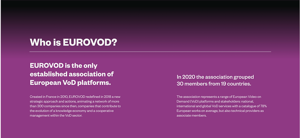 Presentation of Eurovod page 1.png