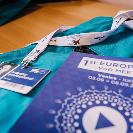 A great success for the 1st edition of the European VOD Meetings in Venice, Italy