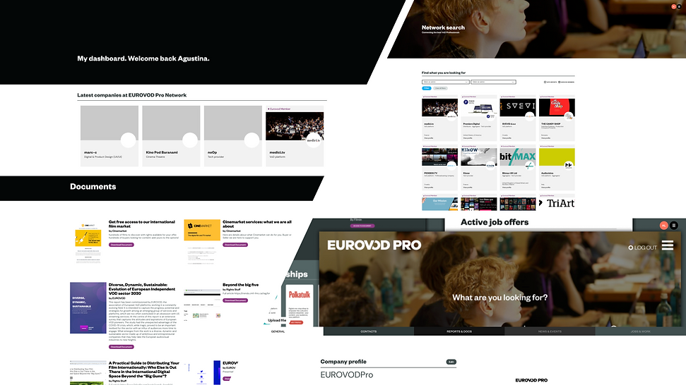 Eurovodpro.org presentation page 4.png