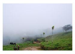 Misty Quiet