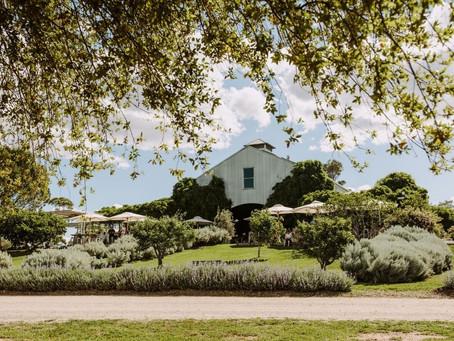 Meet the Winemakers   Part II